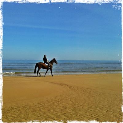 omaha beach 95